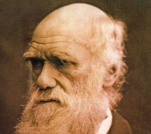 Teoria ewolucji darwina