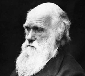 Kreacjonizm literatura